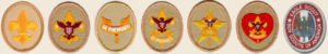 Boy-Scout-rank-badge-progression yellow background